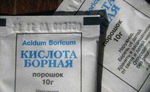 bornaya-kislota-poroshok