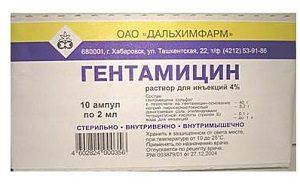 gentamicin-2